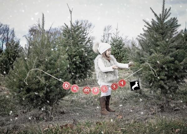 merlinoholiday02_snowscene
